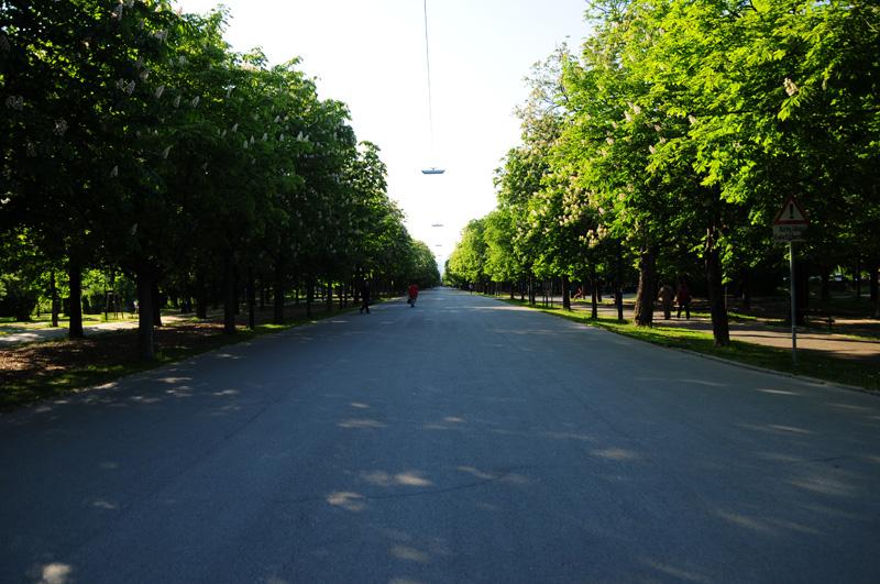 La Hauptallee o avenida principal del Prater